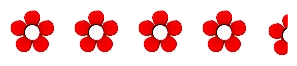 4.5  flowers