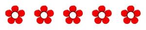5-flowers-300x63